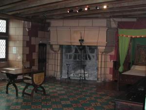 Salle chateau Langeais