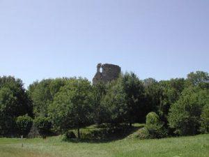 Donjon de Fréteval, vue lointaine, avec la forêt